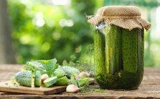 Agurkai agurkėliai! 14 puikių ir laiko patikrintų agurkų konservavimo receptų!