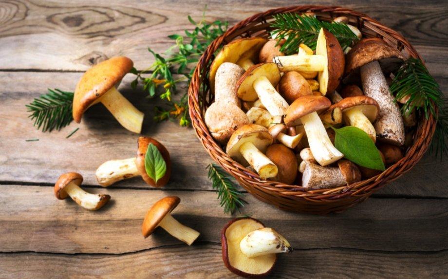 Niekada mums grybų nebus per daug - 26 skanutėliai receptai žiemai ir kasdienai!