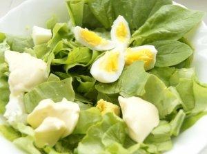 Pavasario salotos su kiaušiniu