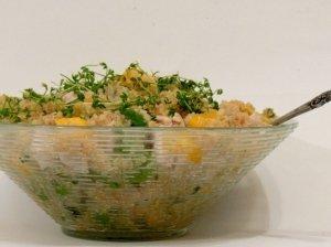 Vištienos, mango ir bolivinės balandos salotos