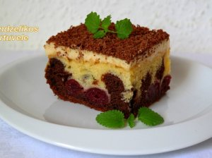 Šokoladinis pyragas su pudingu ir uogomis