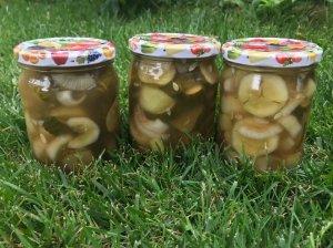 Žiemai marinuoti agurkai su cinamonu