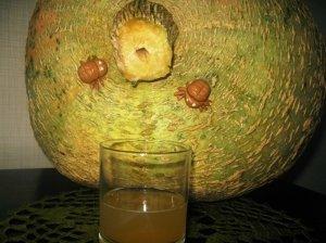 Obuolių - moliūgų  sultys