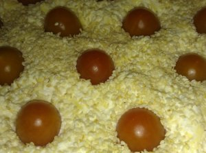 Pikantiškas varškės apkepas su sūriu