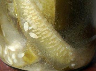 Agurkų ir svogūnų salotos su aliejumi