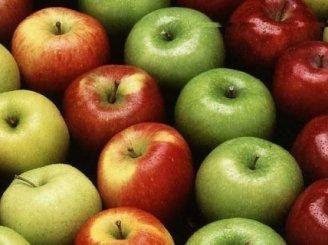 Silkė obuoliuose