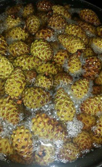 Kankorėžių medus
