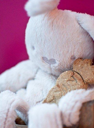 Sveiki sausainiai be cukraus