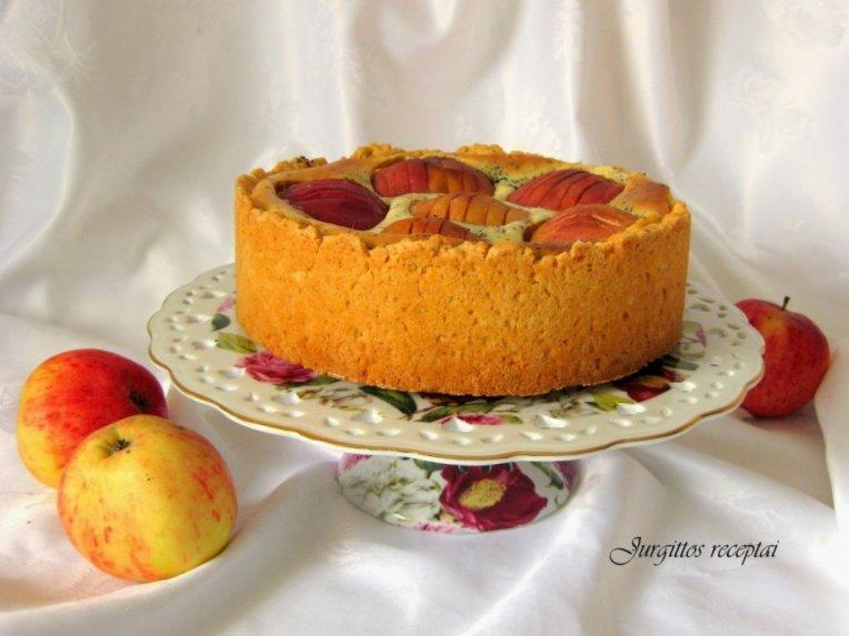 Gražuolis obuolių pyragas su aguonomis ir varške