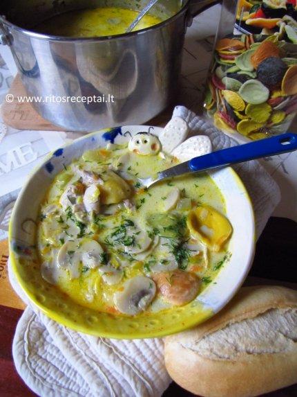 Tiršta vištienos sriuba su sūriu ir pievagrybiais