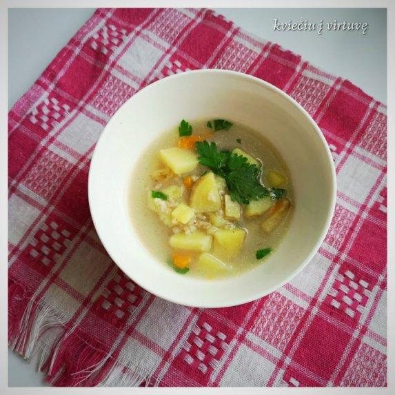 Vištienos sultinio sriuba su miežinėmis kruopomis