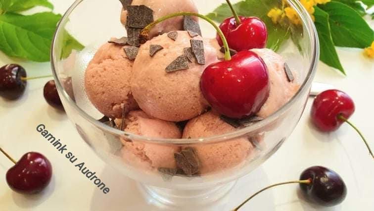 Vaisiniai kokosų pieno ledai